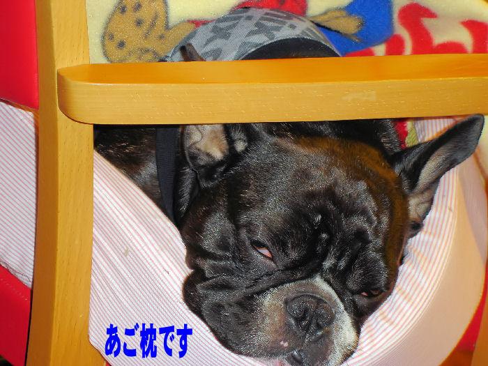 20080111fuku_0031_2
