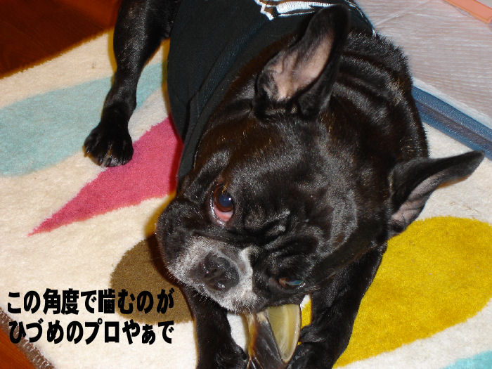 200801115fuku_0141