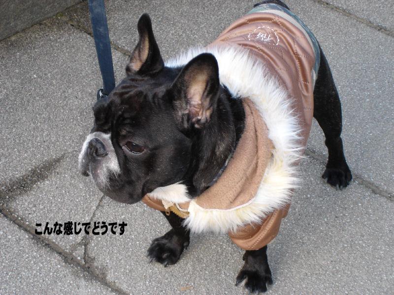 200801117fuku_0031