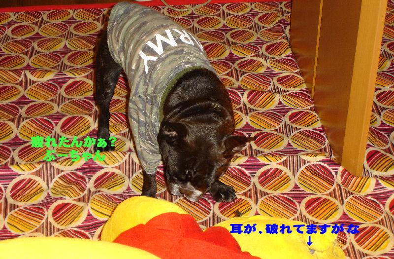 200801119fuku_0031