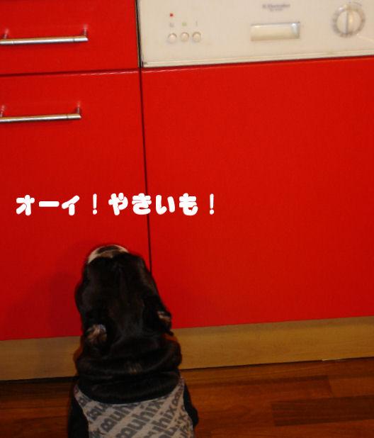 20080124fuku_0061_2