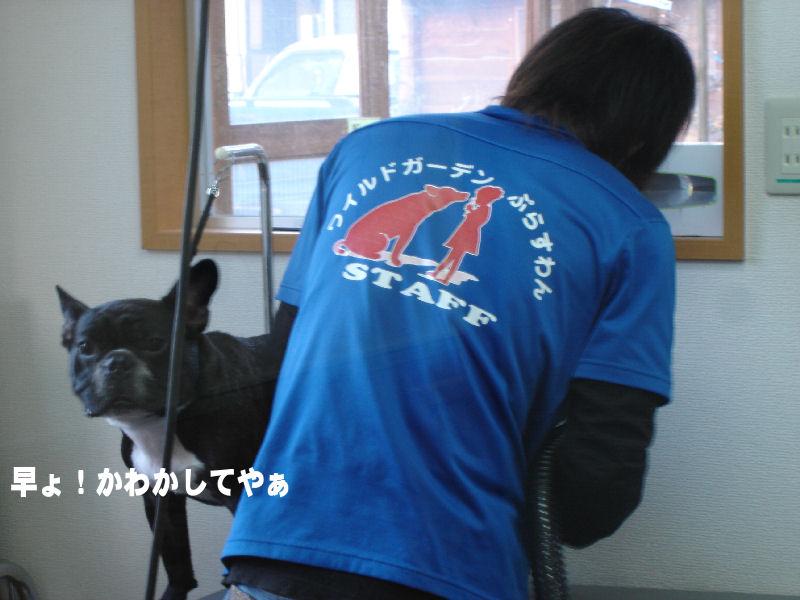 20080126fuku_0401