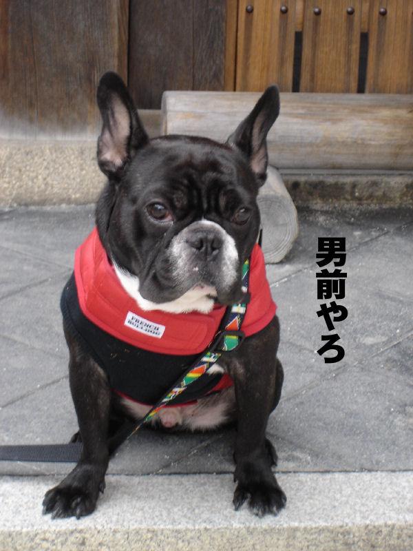 20080130fuku_0041_2