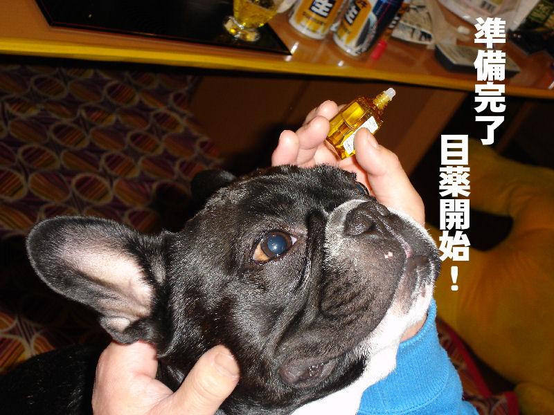 20080201fuku_010_2