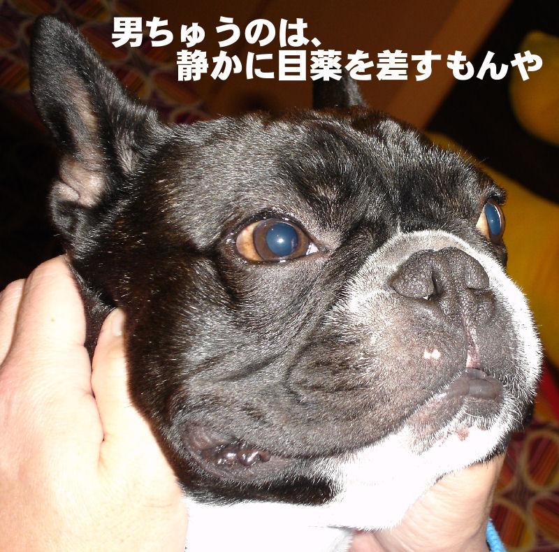 20080201fuku_0121_2
