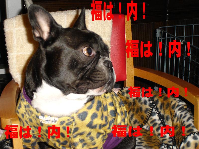 20080203fuku_0031