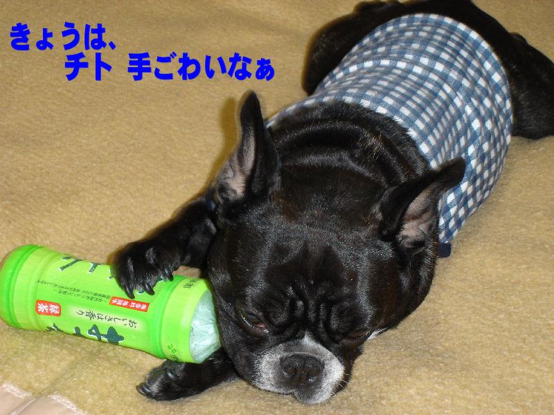 20080122fuku_0091_2