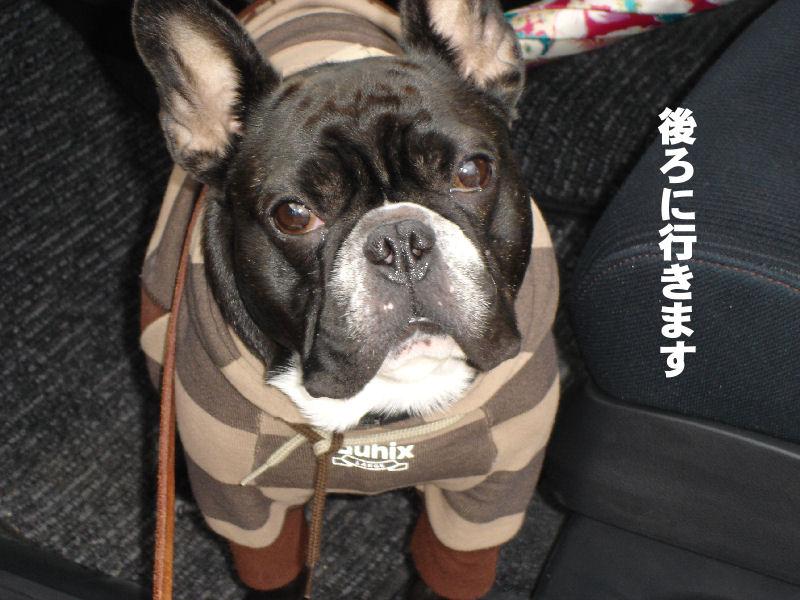 20080229fuku_0051