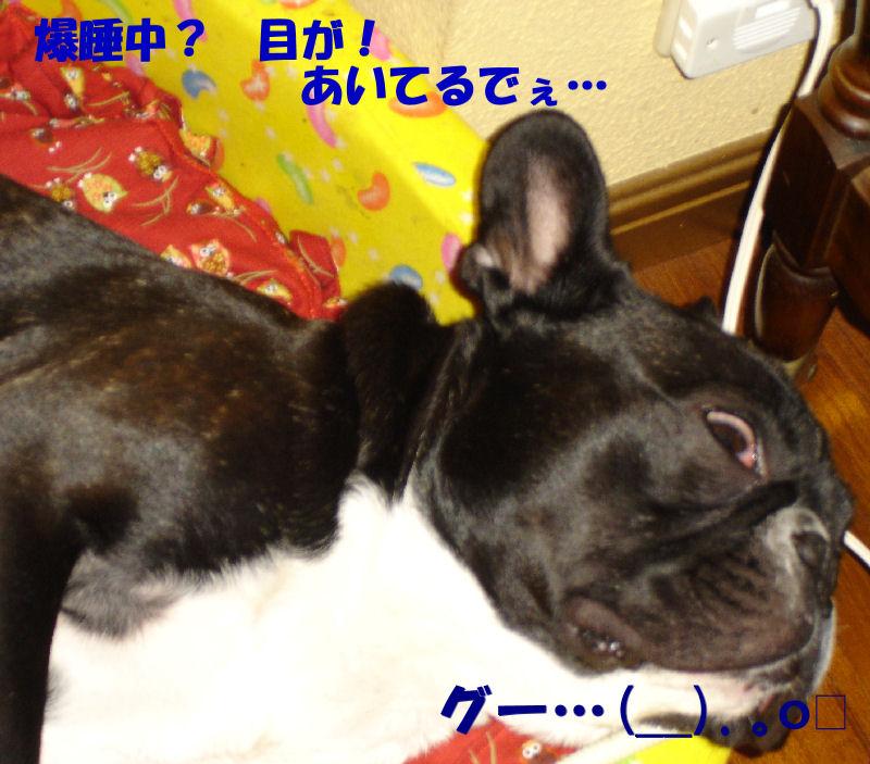 200803010fuku_0031_2