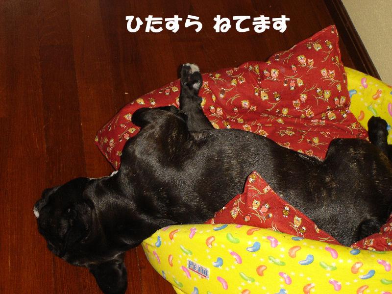 200803010fuku_0051