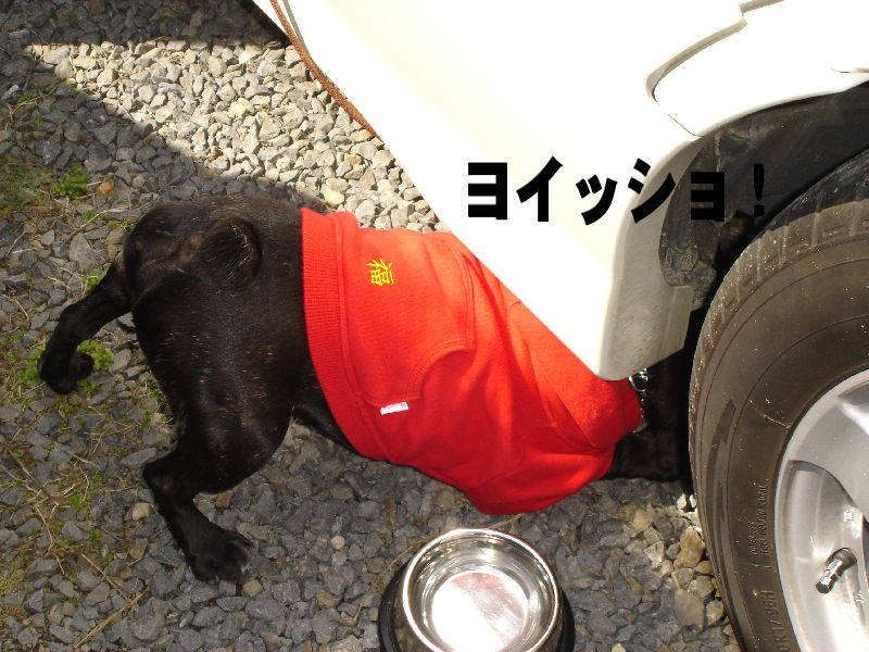 20080319fuku_0041