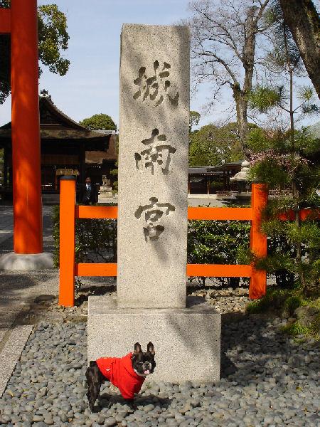 20080319fuku_0091
