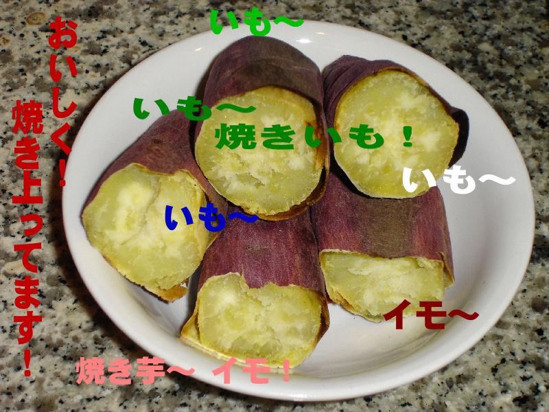 20080324fuku_0231