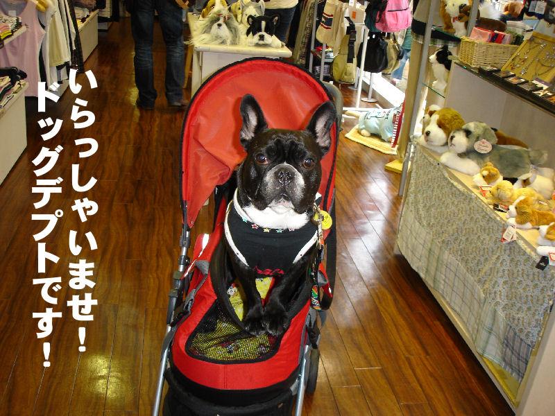 20080331fuku_0061