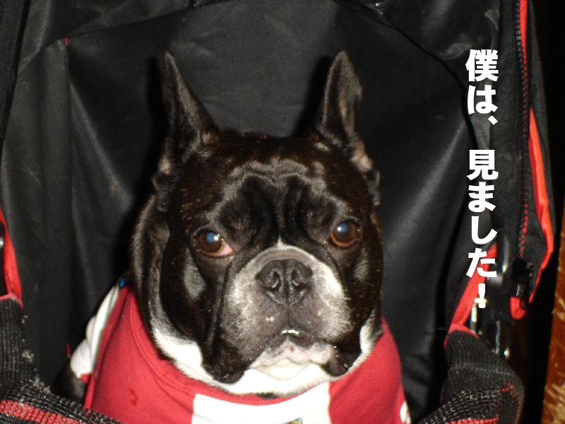 20080405fuku_0041