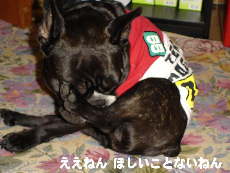 20080405fuku_0161