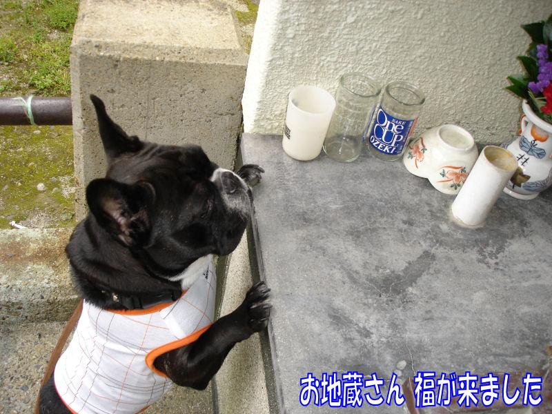 20080416fuku_0321