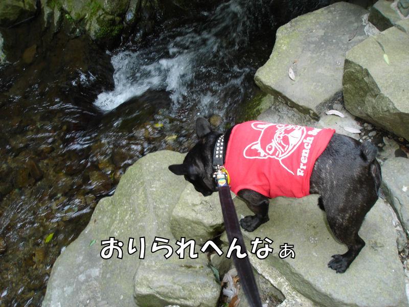 20080427fuku_0161