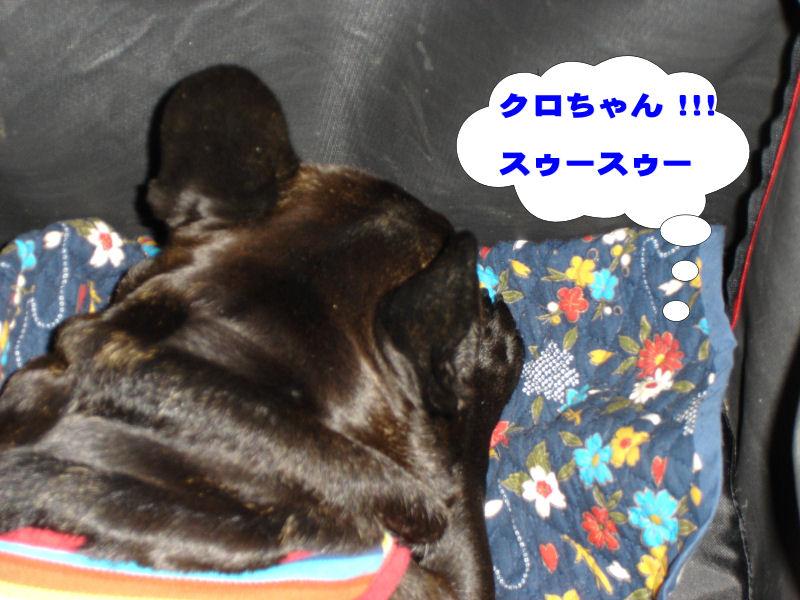 20080511fuku_0111