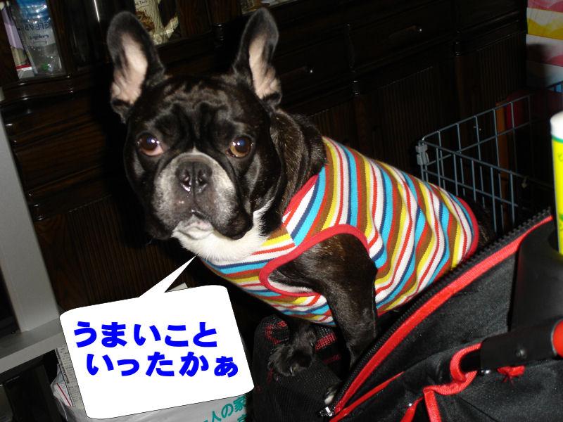 20080511fuku_0171