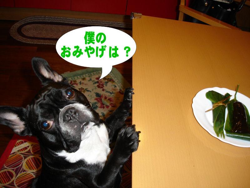 20080426fuku_0281