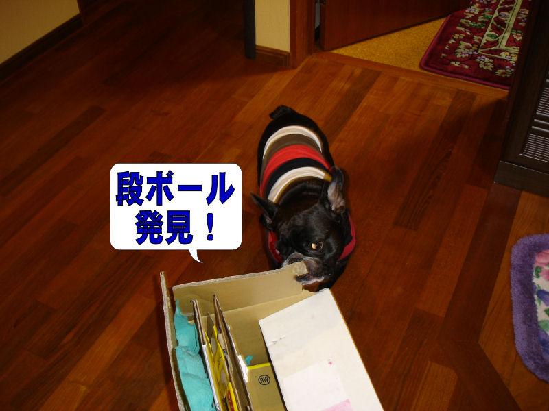 20080611fuku_0301