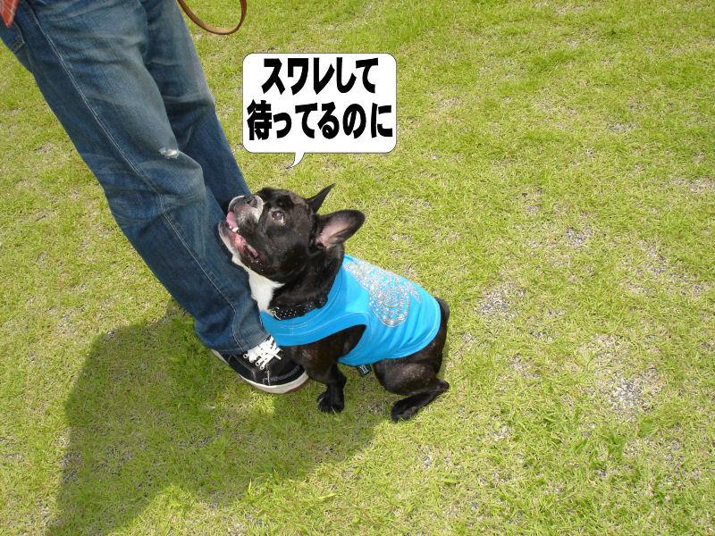 20080614fuku_0061