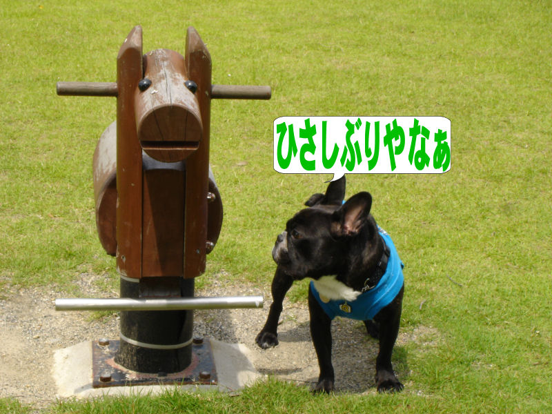 20080614fuku_0411