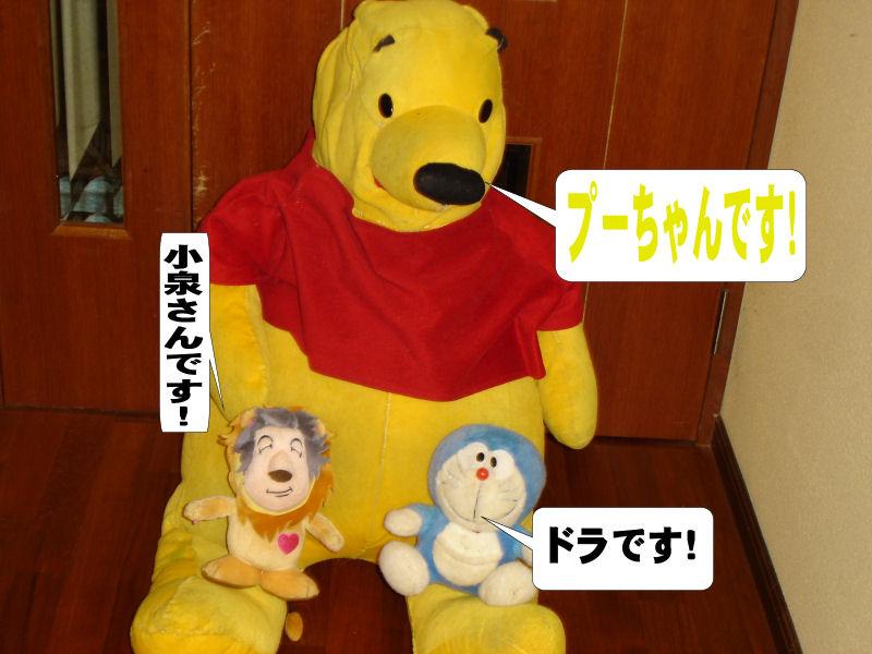 20080520fuku_0011