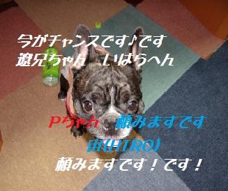 Dsc06851_004